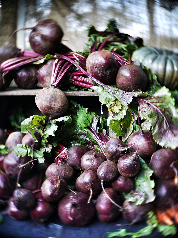 beetroots at noosa farmers market