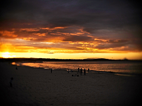 noosa's beach at sunset