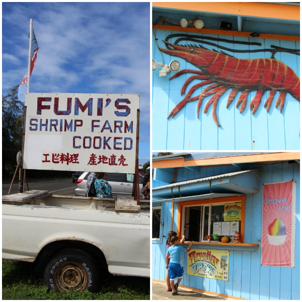 Fumis Shrimp Farm