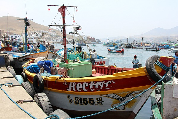 Boats on the dock in Pucusana
