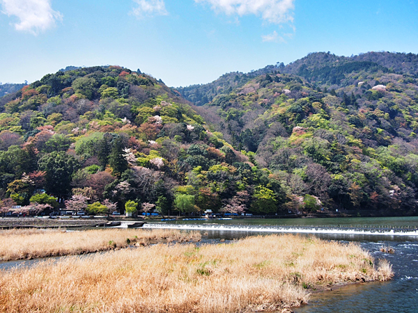 kyoto-kids-arashiyama