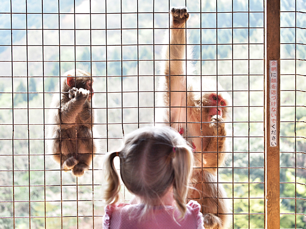 kyoto-kids-monkey-park-1