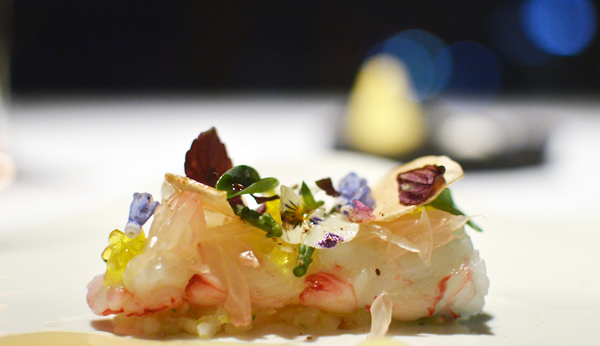 Chefs with Altitude langoustine 2