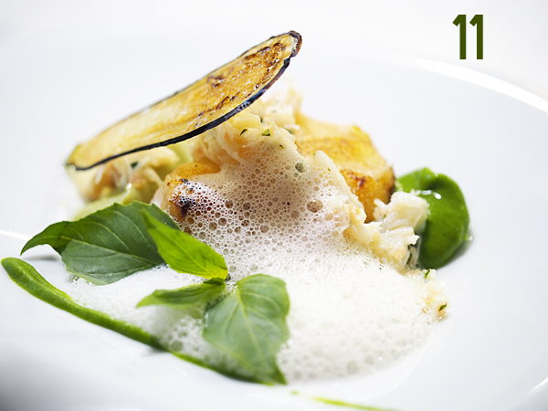 new-tippling-monkfish